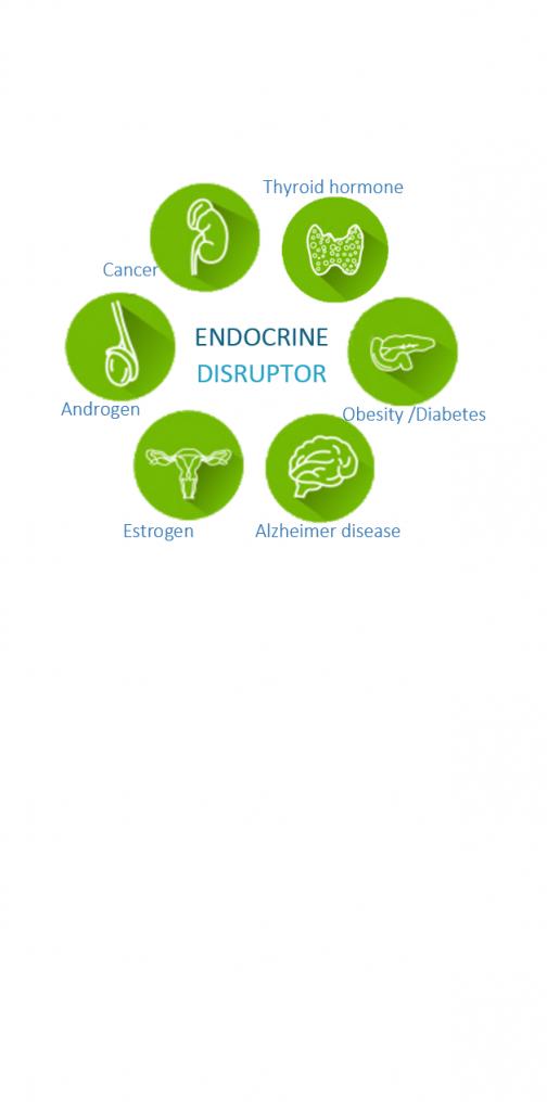 Services Atoxigen : Endocrine Disruptors