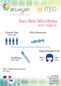 Borchure : Le Microbiome de la peau (Acne Vulgaris)